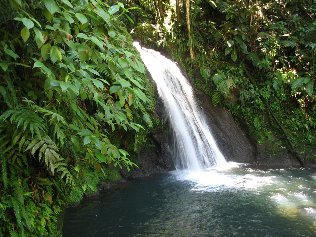 Waterfalls-in-Guadeloupe