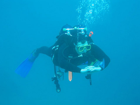 Introductory -Diving-in -aruba