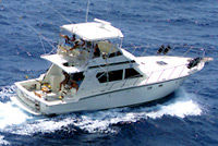 Tours in puerto rico puerto rico attractions on for San juan island fishing charters
