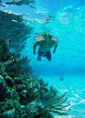 San_ Juan _Snorkel _and Picnic_ Cruise