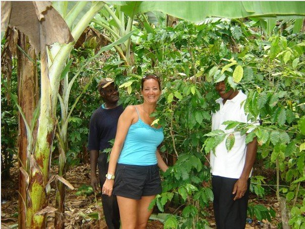 Traverse Jamaica Authentic Sightseeing Tours