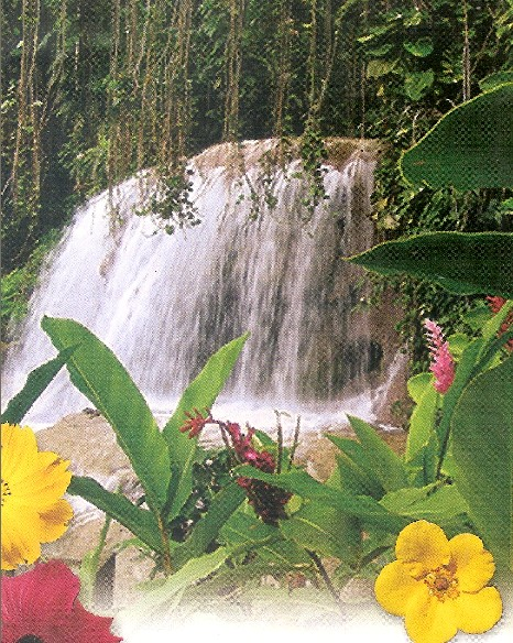 Jamaica Attraction And Tours Caribbean Tour Caribbean