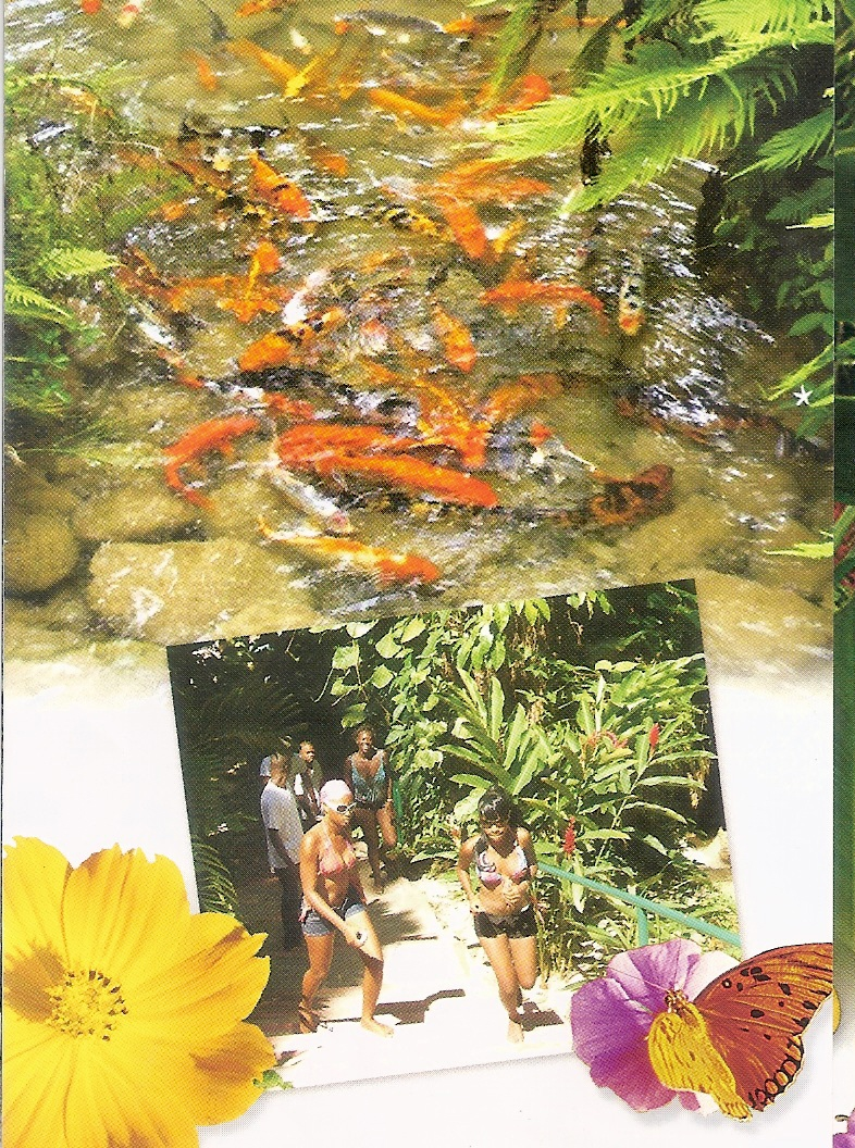 enchanted garden ocho rios